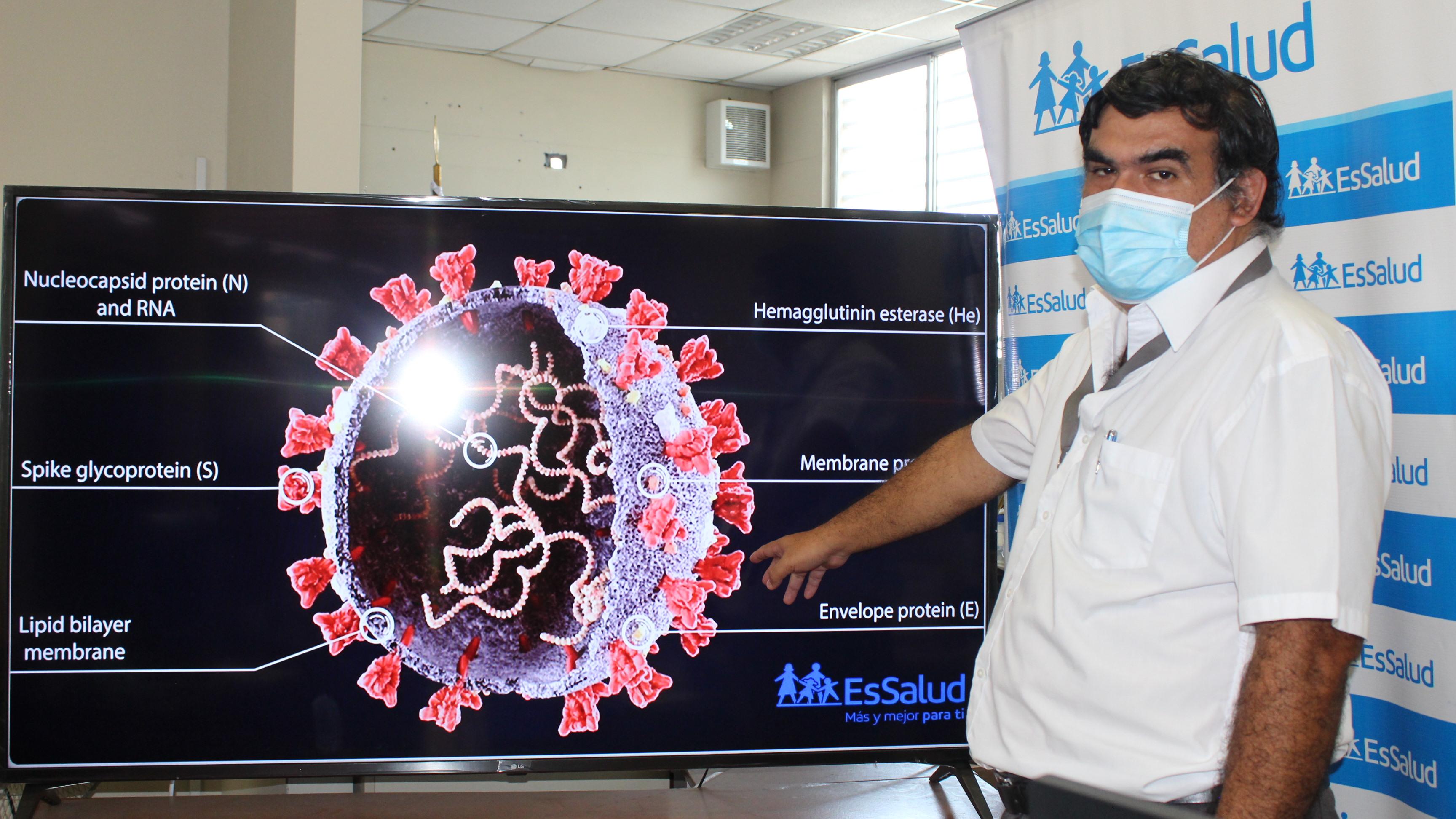 Essalud - EsSalud: nuevas variantes de Covid-19 aumentan mortalidad y casos son más graves que a inicio de pandemia